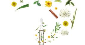 13 rostlinných složek pro extrémní vitalitu a sílu vlasů