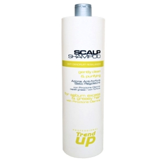 Trend Up Scalp šampón proti lupům 1000 ml